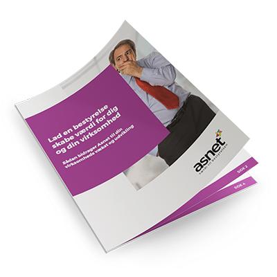 E-bog om bestyrelser | Asnet