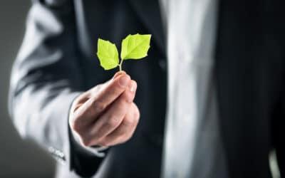 Er bestyrelser i danske SMV'er klar til grøn omstilling?